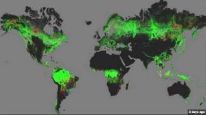 46 deforest_googleearth