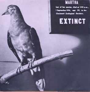 21 martha-extinct