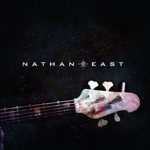 25 gitaresk